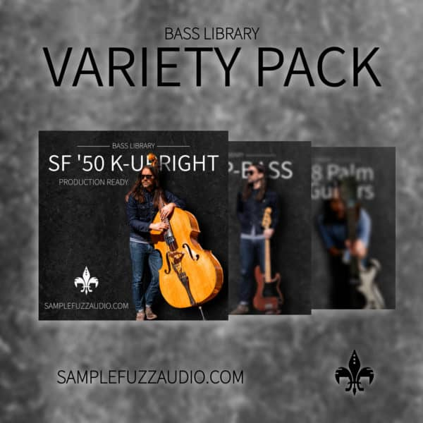 Starter Variety Pack (mix of bass and guitars) 1